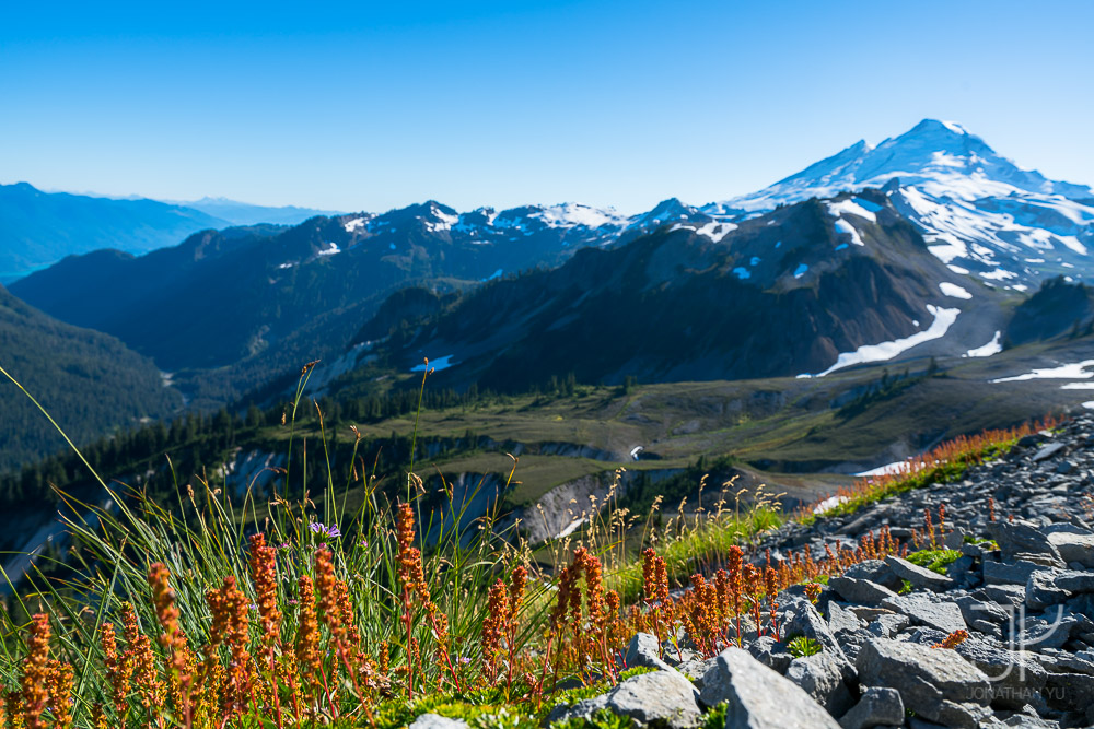 View of Mt Baker from Table Mountain