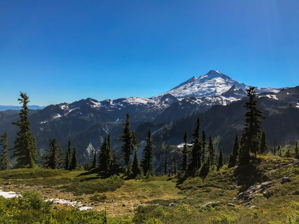 With everything going on around you, it's easy to forget about Mount Baker looming to the south